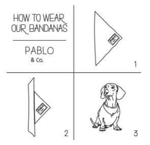 Pablo & Co - Dog Bandana - Lil Shit-Dog Bandana-Aus Pet Accessories
