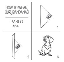 Load image into Gallery viewer, Pablo & Co - Dog Bandana - Spot-Dog Bandana-Aus Pet Accessories