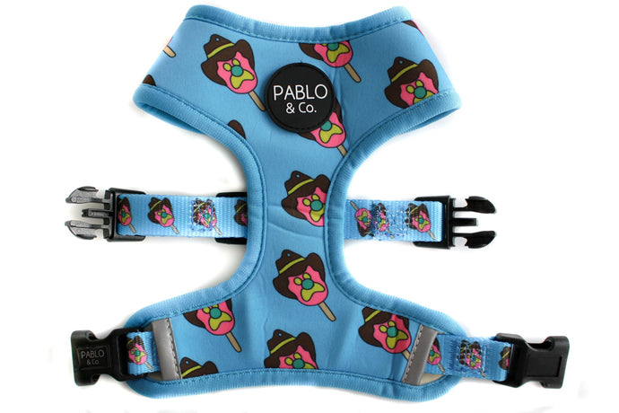 Reversible Harness Leash & Treat Bag Combo-Aus Pet Accessories