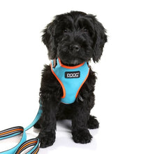 Load image into Gallery viewer, DOOG Neoflex - Adjustable Dog Harness - NEON Beethoven-dog harness-Aus Pet Accessories