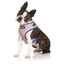 Load image into Gallery viewer, DOOG Neoflex - Adjustable Dog Harness - Gromit-dog harness-Aus Pet Accessories
