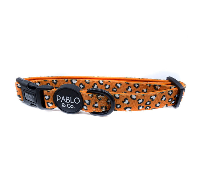 Pablo & Co - That Leopard Print Collar-collar-Aus Pet Accessories