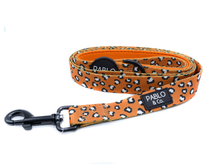 That Leopard Dog Leash - Pablo & Co-dog leash-Aus Pet Accessories