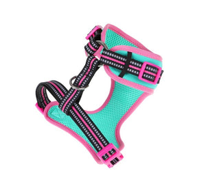DOOG Neoflex - Adjustable Dog Harness - NEON Rin Tin Tin-dog harness-Aus Pet Accessories