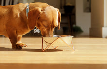 Load image into Gallery viewer, Elevated Dog Bowl - Bendo - Luxe Copper-elevated dog bowl-Aus Pet Accessories