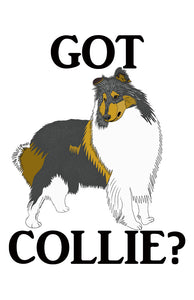 Got Collie?  T-shirts with Rough Tri