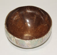 Coconut bowl with shell