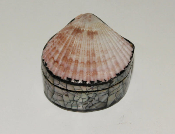 Jewelry box with shell
