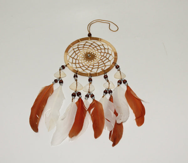Dream Catcher in color option