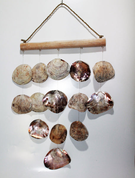 Hanging Shell Natural Line