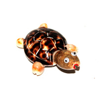 Turtle with Magnet