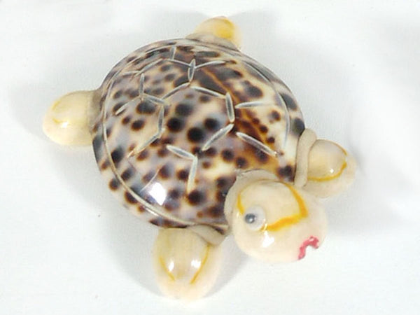 Turtle made from sea shell mix