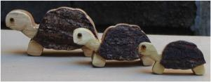 Turtle set of 3
