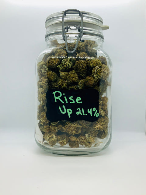 Rise Up Premium Hemp Flower - Beyond Full Spectrum