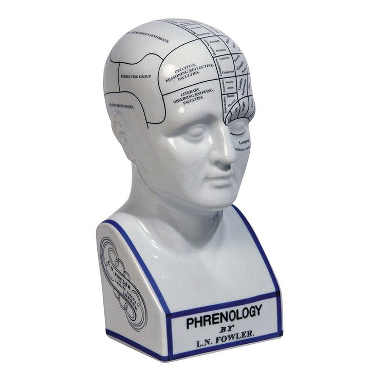 Phrenology Head (4687999074403)
