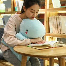 Load image into Gallery viewer, blue dinosaur plushie studying