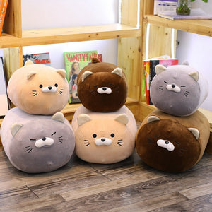 Cute cat plushie and pillows