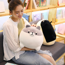 Load image into Gallery viewer, girl playing with grey angry shiba inu plushie