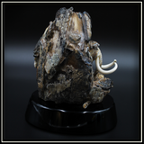 Mammoth Tooth on Obsidian Base