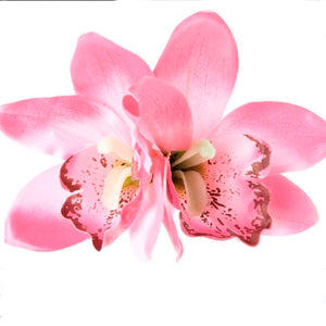 Double Orchid Hair Flower Pale Pink