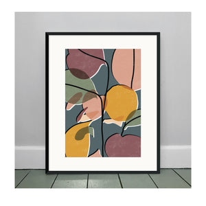 Baby Rubber Plant No. 2 A3 Art Print