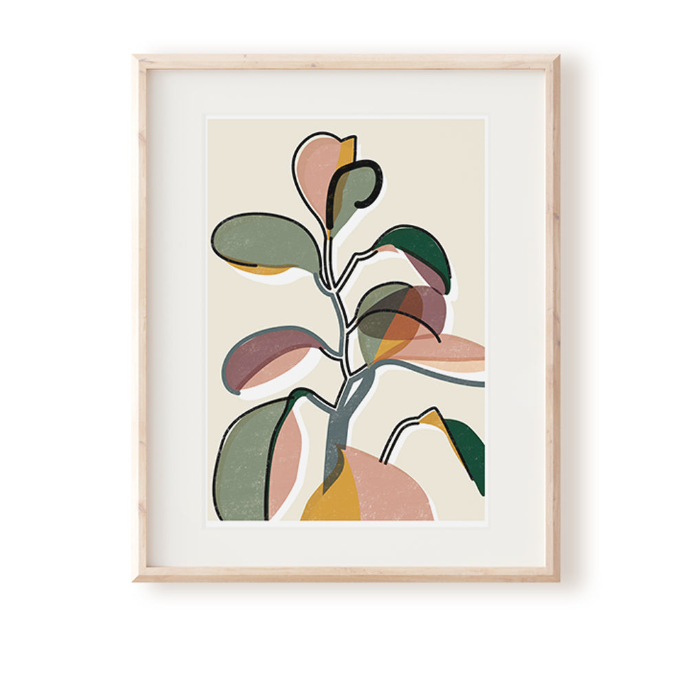 Baby Rubber Plant II Art Print