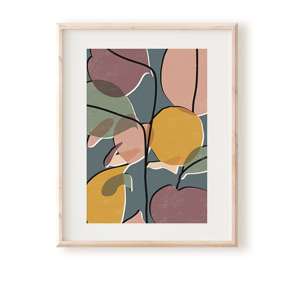 Baby Rubber Plant No.2 Art Print