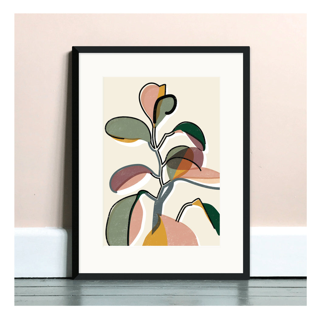 Baby Rubber Plant II A4 Art Print