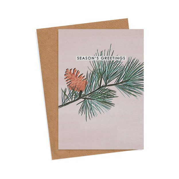 6 Pine Branch Christmas Cards