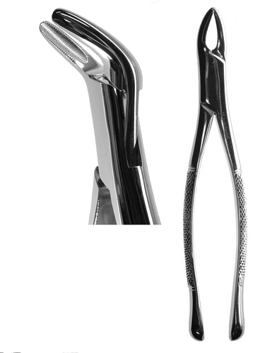 #151 Cryer Forceps (Serrated)  [Z-1198-S]