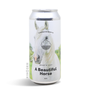 Cloudwater - A Beautiful Horse