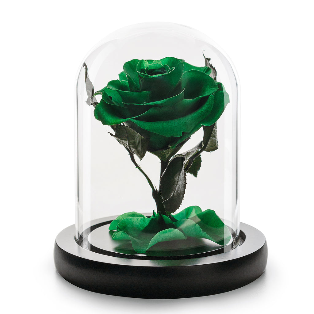 Eternity Green Rose in Glass Dome -1