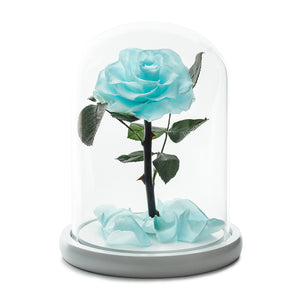 Tiffany Infinity Rose in Glass Dome -1