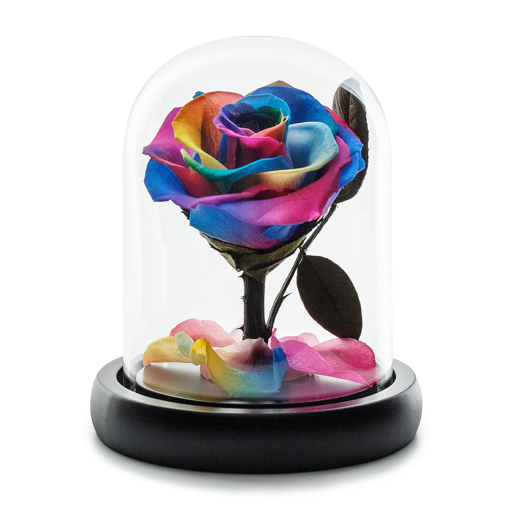 Dark Rainbow Eternity Rose in Glass Dome -1