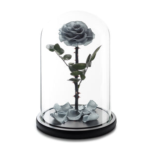 Grey Eternity Rose in Glass Dome -1