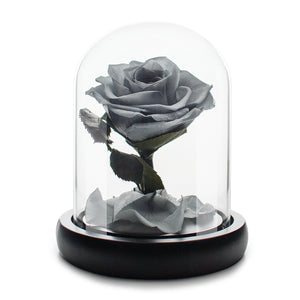 Grey Infinity Rose in Glass Dome
