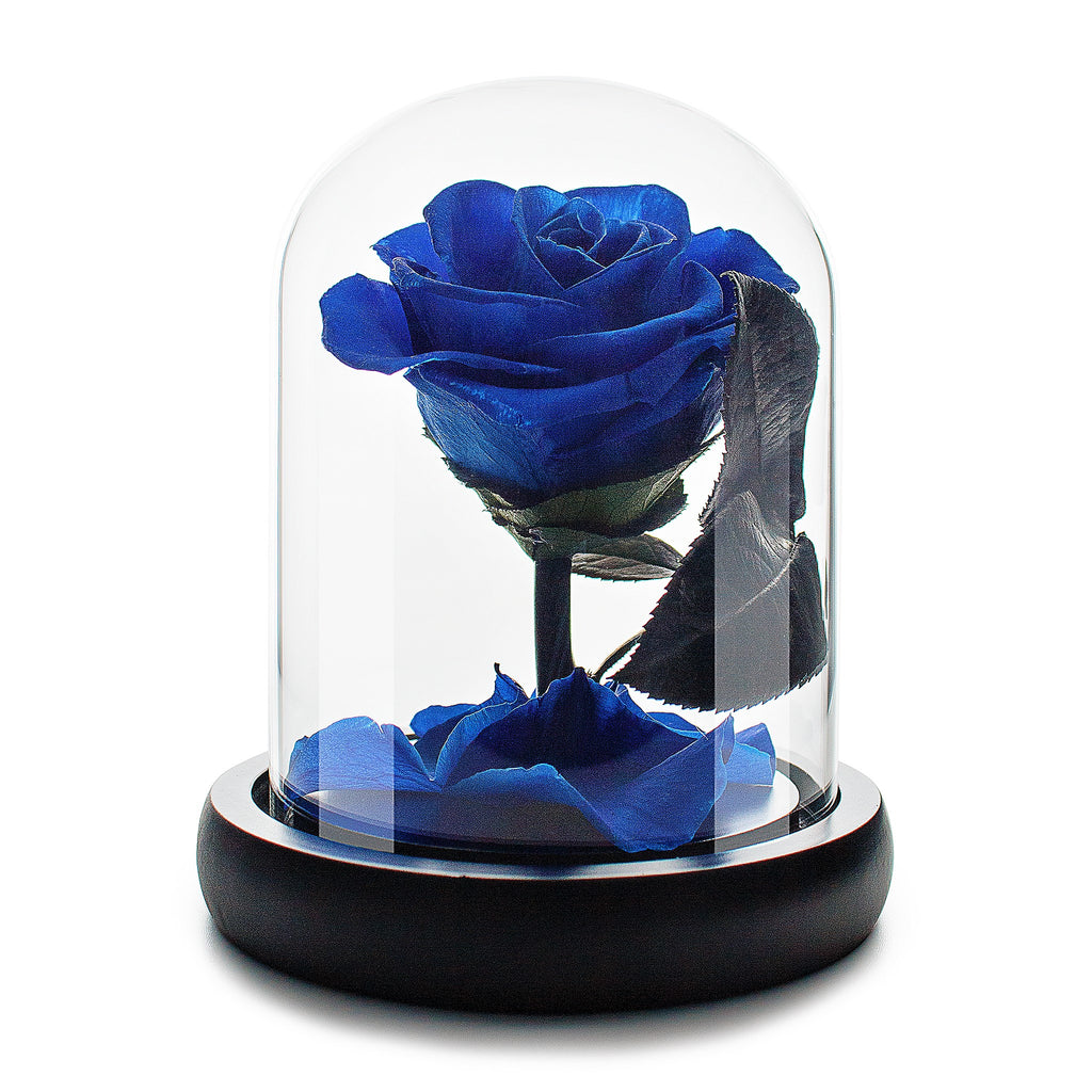 Royal Blue Infinity Rose in Glass Dome