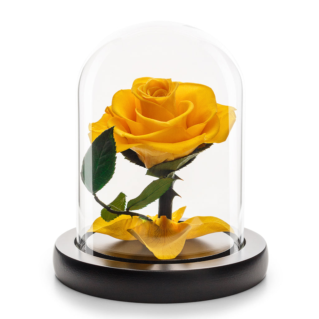 Eternity Yellow Rose in Glass Dome -1