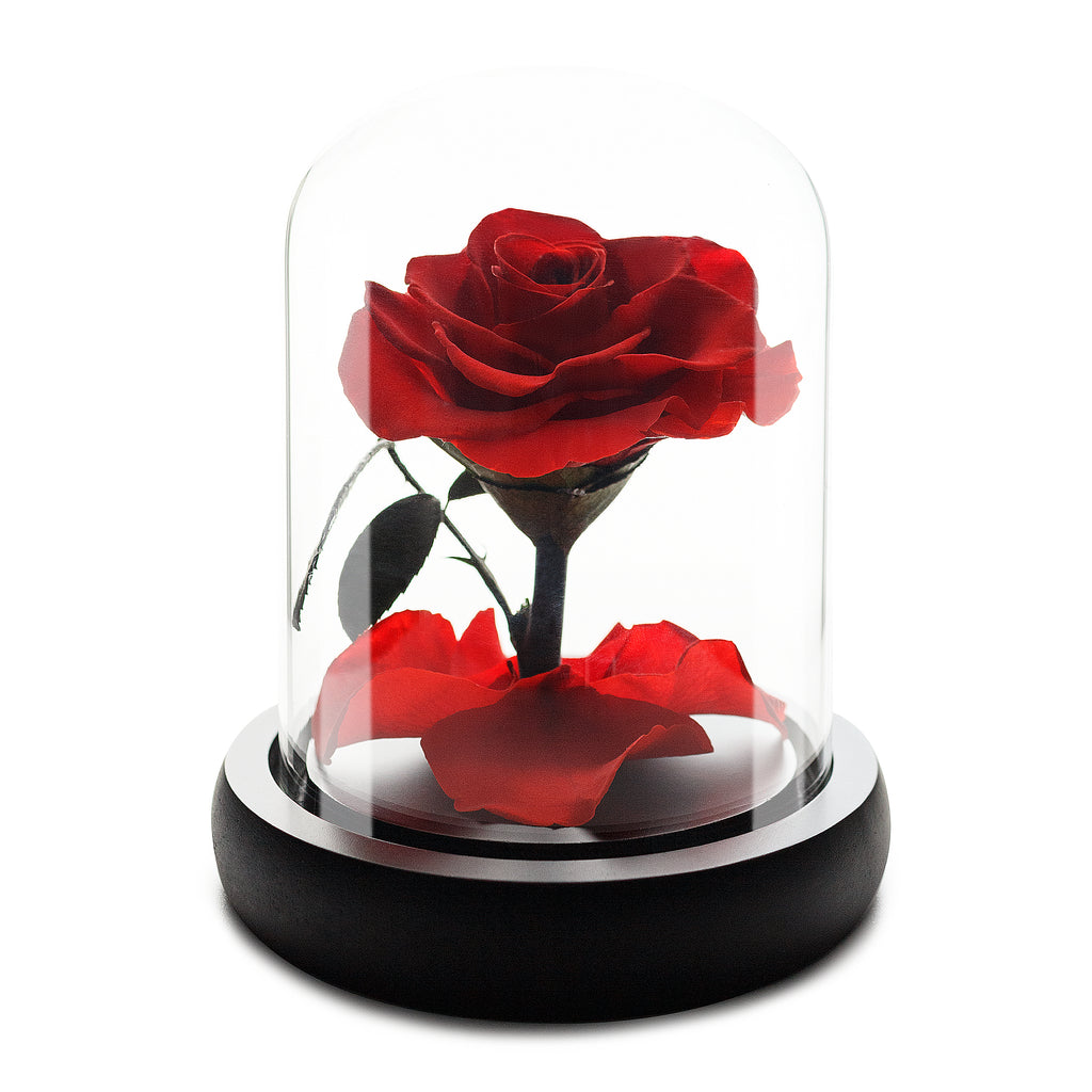 Red Infinity Rose in Glass Dome -1