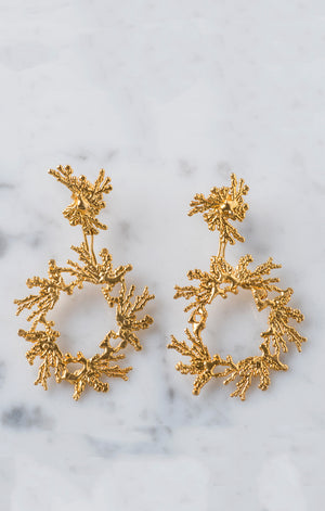 Acropora Circle Earring Gold Plated 24k