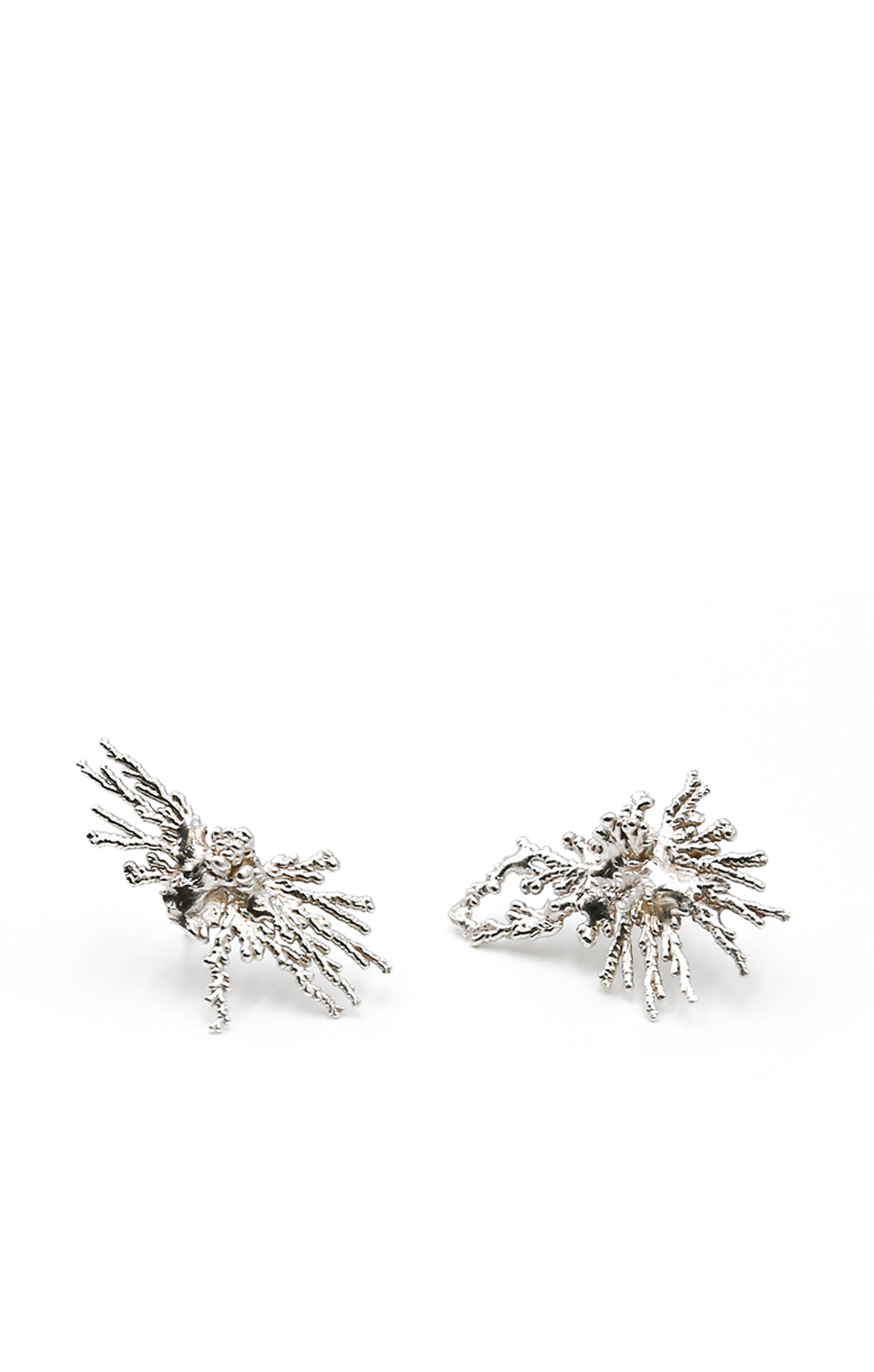 Acropora Coral Silver Earrings