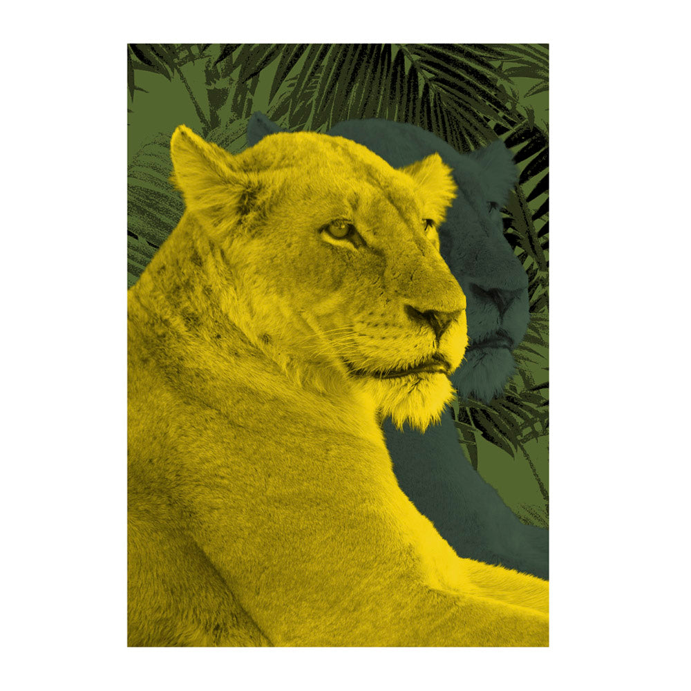 Lioness Wall Poster By Hershgold In Yellow