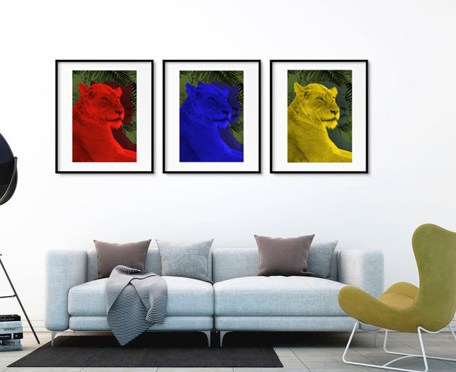 Lioness Wall Poster By Hershgold In The LIving Room