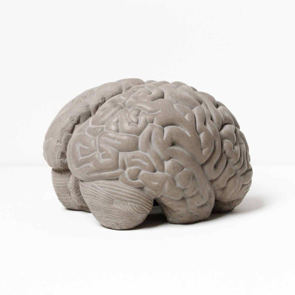 Lyon Beton Grey Matter Brain Bookends ( Concrete)