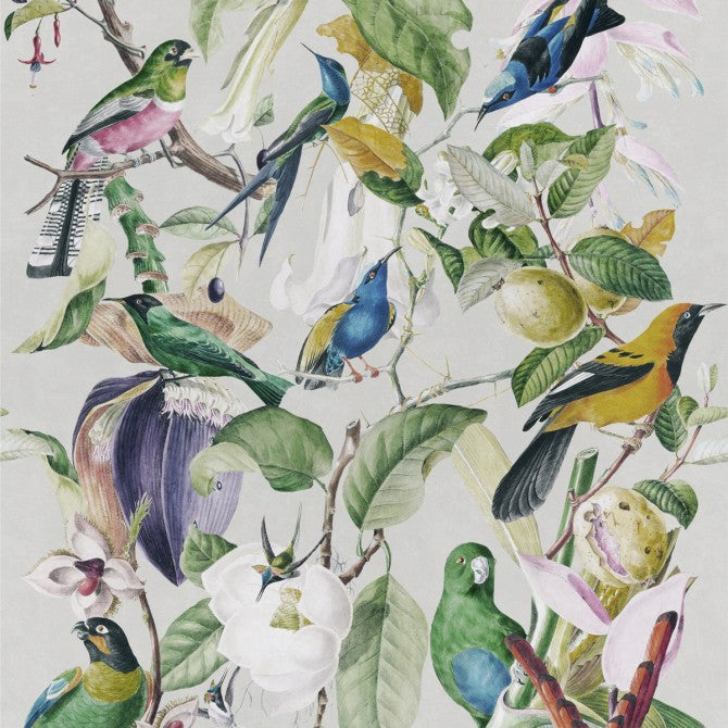 Mind ThMind The Gap Tropical Birds Wallpapere Gap Tropical Birds Wallpaper