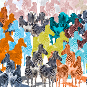 Zebra Party Colours Wall Art Poster By Hershgold
