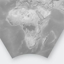 Load image into Gallery viewer, Bat Projection World Map