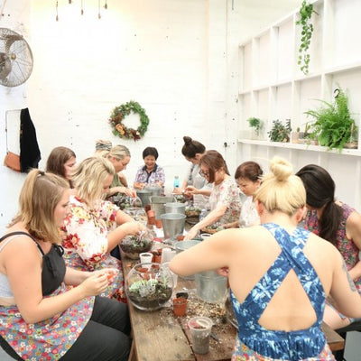 Terrarium workshop with plant lovers