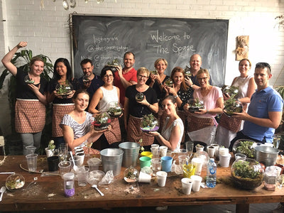 Team Building terrarium workshop with Commonwealth Bank Corporate Team