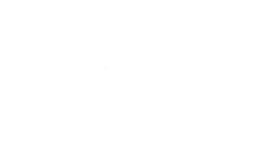 Flower Lane & Co